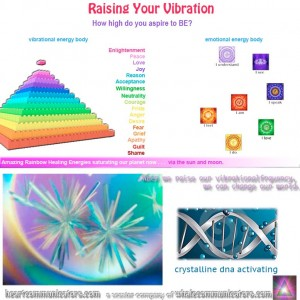 vibrationchard