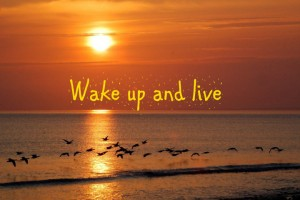 wake-up-and_live