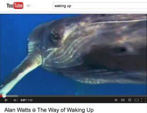 thewayofwakingup